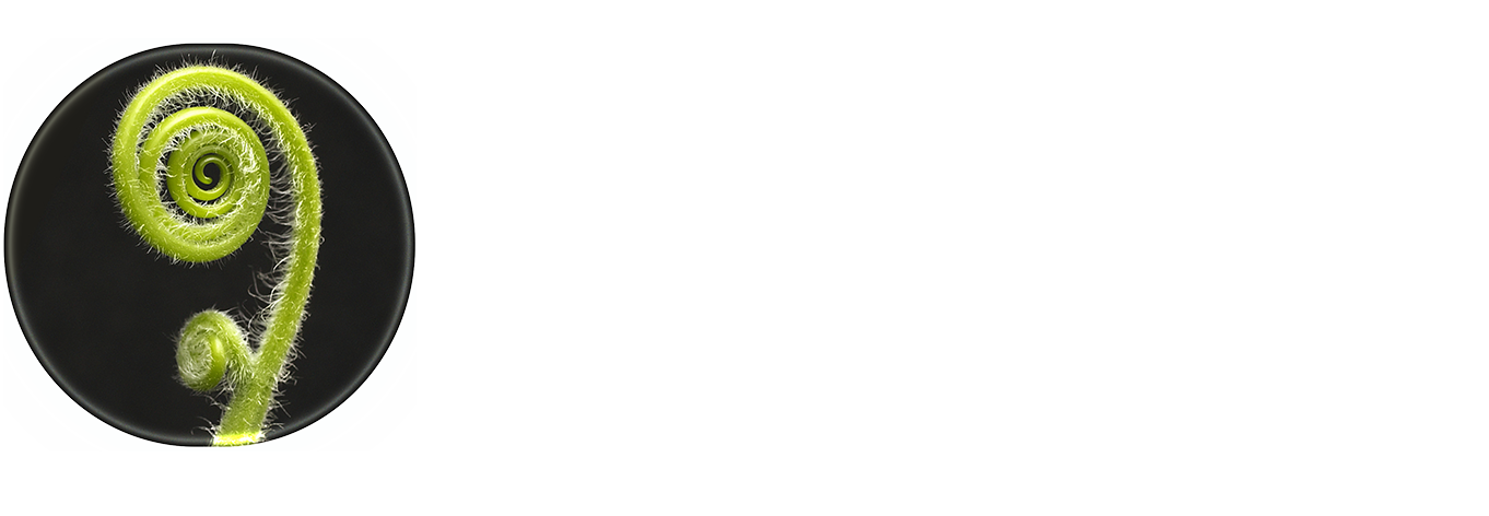 Listening Place